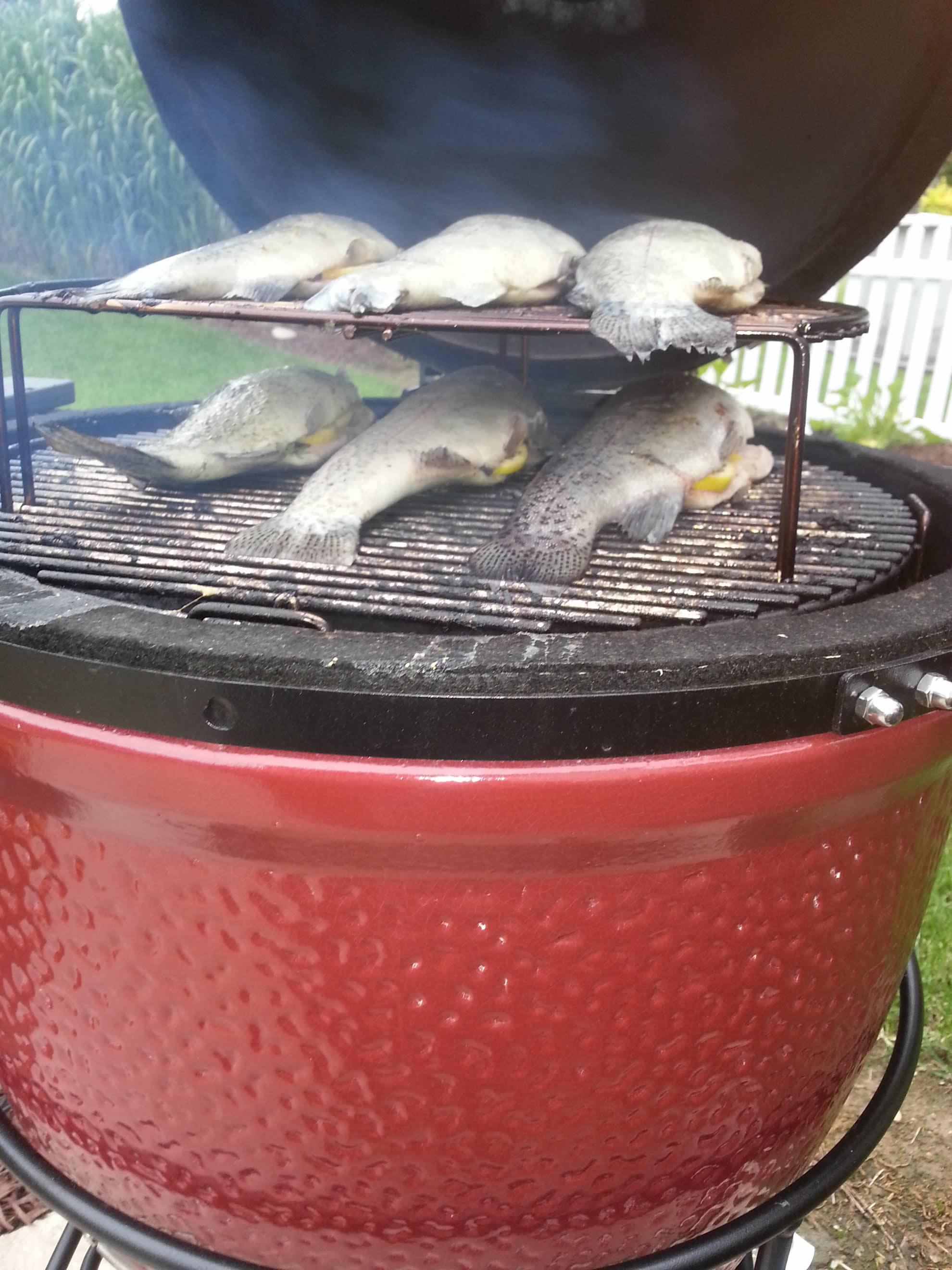Smoked Fish In The Kamado Joe Ceramic Grill Chesterfield Mo