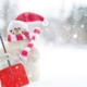Prepare for snow removal by checking your snow tools